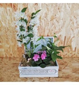 Bouquet Frescor de Primavera